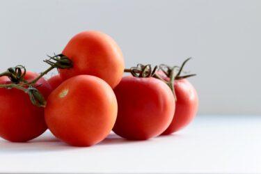 【おいしくて健康にもいい】フレッシュトマトのカクテルレシピ